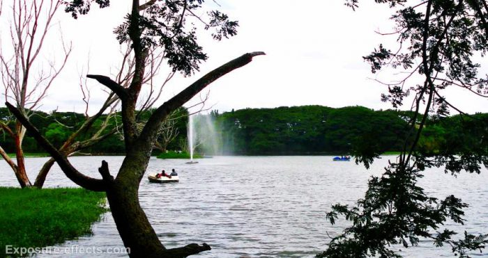 Karanji-lake-mysore-india-7